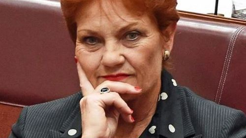 "Senator Hanson yesterday called for the burqa to be banned in ""buildings, banks and schools"". (AAP file image)"