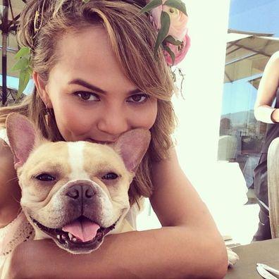 Chrissy Teigen mourns death of her dog Pippa.