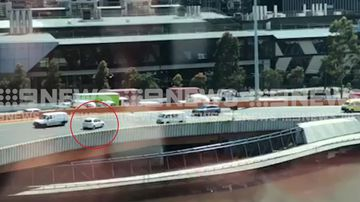 Meet the contender for Melbourne's most confused driver