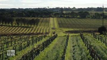 New hurdle for Australian wine exporters