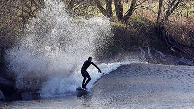 A surfer takes the wave of the tidal bore called Severn bore on the River Severn at Minsterworth in Gloucestershire, South West England.