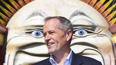 Bill Shorten has accused the Liberals of running a 'fake news' campaign.