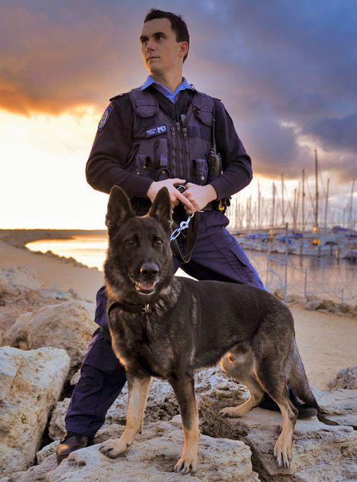 Rumble and handler. (Supplied, WA Police)