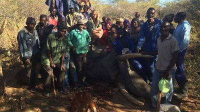 Kendall Jones wrote that the meat from the elephant she shot will be used to feed families in Zimbabwe. (Facebook)