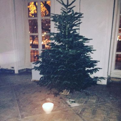"We'll call Gaia Repossi's Christmas tree ""minimalist"", just like her."