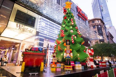 <p>Largest Lego Christmas tree in the Southern Hemisphere</p>