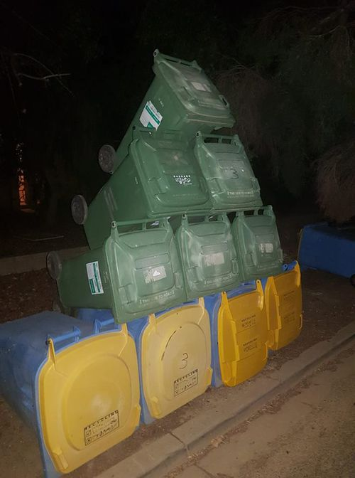 Council says it has safety concerns about the 'bin sculptures' Source FACEBOOK