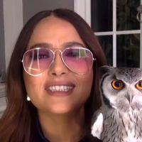 Salma Hayek recalls strange story of what her pet owl did to Harry Styles' hair