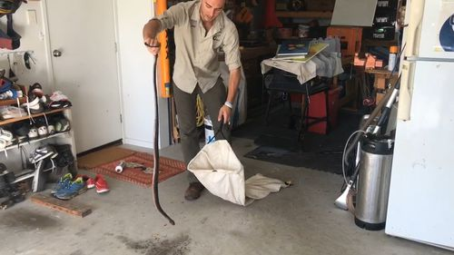 Jack Hogan of Sunshine Coast Snake Catchers is warning people to look out for snakes on all surfaces after a snake was caught on a garage benchtop.