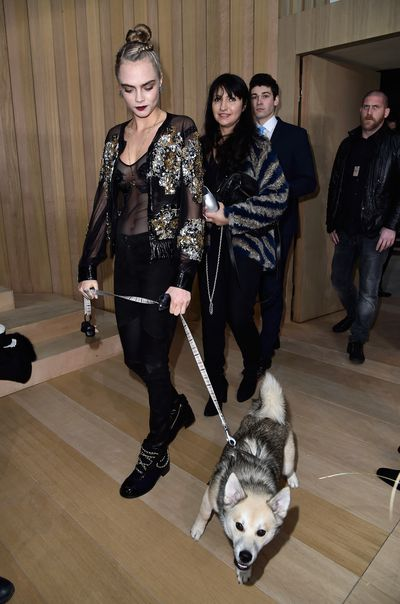 <p>Few spectacles are as elegant as guests gathering for a Chanel show, and the haute couture spring/summer 2016 collection was no exception.<br /><br />Diane Kruger, Gwyneth Paltrow, Inès de la Fressange and Clémence Poésy sat alongside bright young things Ellie Bamber and Alma Jodorowsky, but the guest who made the biggest impression was Leo, Cara Delevingne's excitable puppy.<br /><br />Not only was he granted the privilege of a front row seat, but the pup also got taken backstage. </p><p>No word yet on how Choupette felt about having to share Karl's affections.</p>