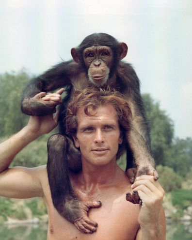 Ron Ely, Tarzan, on set, TV show, monkey