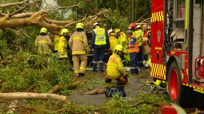 <p>A massive storm in Sydney's west has caused widespread damage, with a man killed after a tree fell on the car in which he was a passenger at Emu Plains.</p><p><strong>Click through for photos of today's storm.</strong></p>