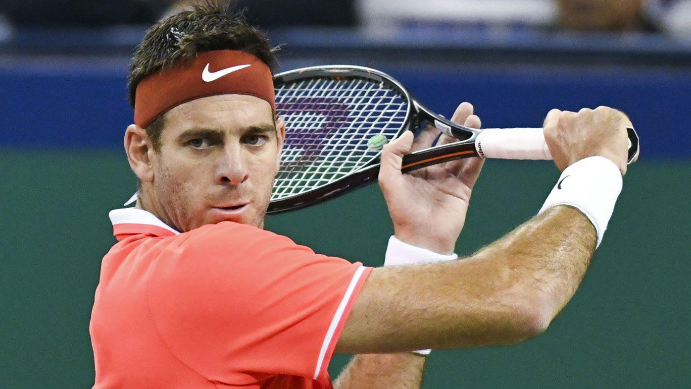 Injured former Grand Slam winner Juan Martin del Potro to miss Australian Open