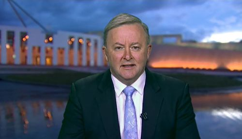 Labor MP Anthony Albanese said the minister's comments were 'pretty odd'. Picture: TODAY
