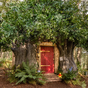 Now you can holiday in Winnie the Pooh's tree house