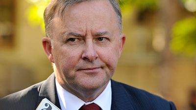 "<strong>WINNER</strong><br> Anthony Albanese (ALP, Grayndler, NSW) - avoided Greens assault after Daily Telegraph ""Save Our Albo"" campaign."