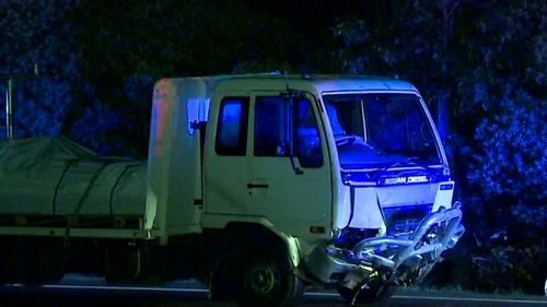 A woman has died in a head-on crash with a truck at St Clair.