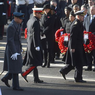 Prince William and Prince Harry reunite for Remembrance Day events