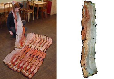 The bacon scarf