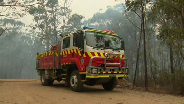 A man has been charged after allegedly stealing fire-fighting equipment and a National Parks and Wildlife Service uniform in the NSW Blue Mountains.