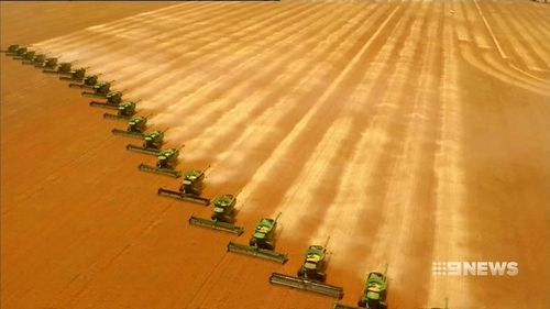 Wheat harvesters in WA.