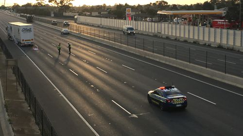 It is believed the pedestrian was struck first by a car and then a truck on the freeway.