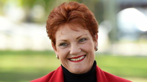 Senator-elect Pauline Hanson earlier this week. (AAP)
