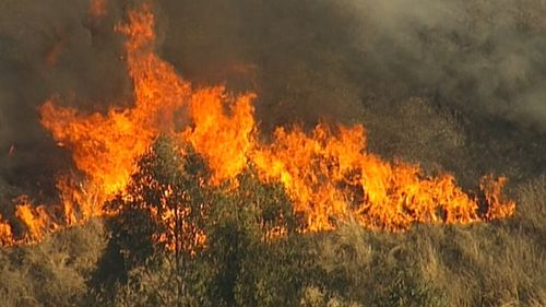 Firefighters are conducting back-burning across NSW, including Nowra on the south coast.