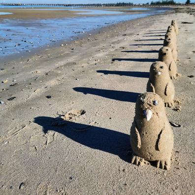 Kel Devoil creates adorable sand penguins along a Melbourne beach