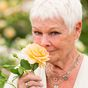Judi Dench reflects on the time she gave her beloved pet goldfish mouth-to-mouth