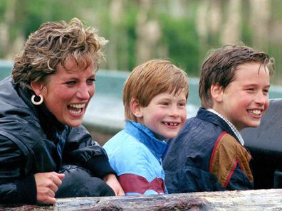 Princess Diana and her sons William and Harry at Thorpe Park