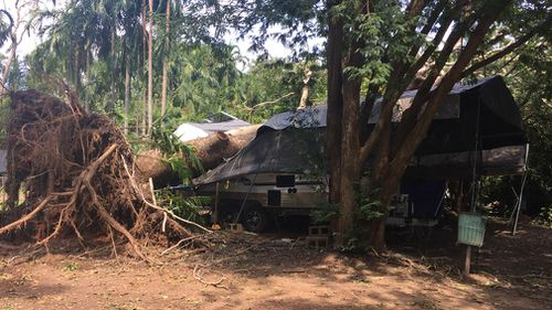 A caravan was also crushed by a falling tree. (9NEWS)