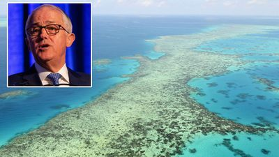 Turnbull to face grilling over $444.3m Reef grant