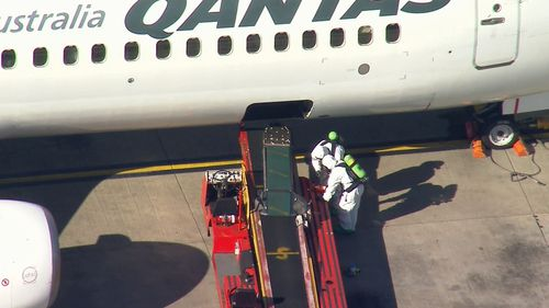 Emergency services are investigating a package found at Sydney domestic airport.