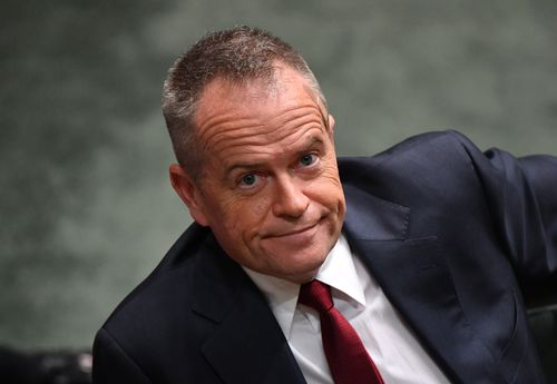 Opposition leader Bill Shorten said Labor only partly supported the government's plan. Picture: AAP