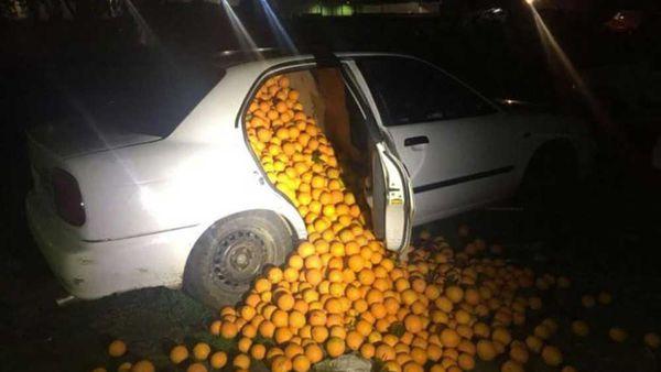 Orange heist