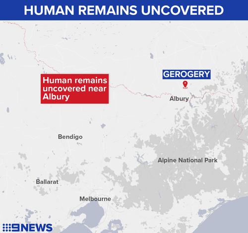 Detectives searched a rural Gerogery property and located what they believe are human remains.