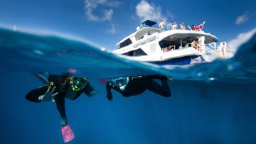 Tourists snorkel over Flynn Reef off the coast of Cairns