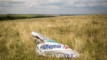 MH17 five year anniversary