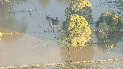 A wild storm has left a path of destruction on the Sunshine Coast, while other parts of south-east Queensland are preparing to assess the damage from the weekend's big wet. (9NEWS)