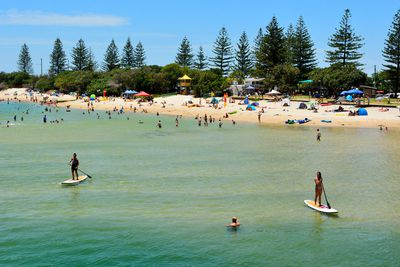 Best Swimming Spot: Tallebudgera Creek, Gold Coast, QLD