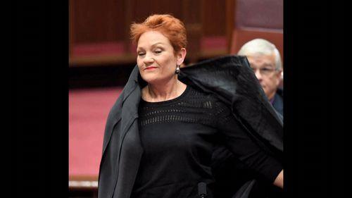 Pauline Hanson's infamous burqa stunt shocked the Senate and drew widespread criticism.