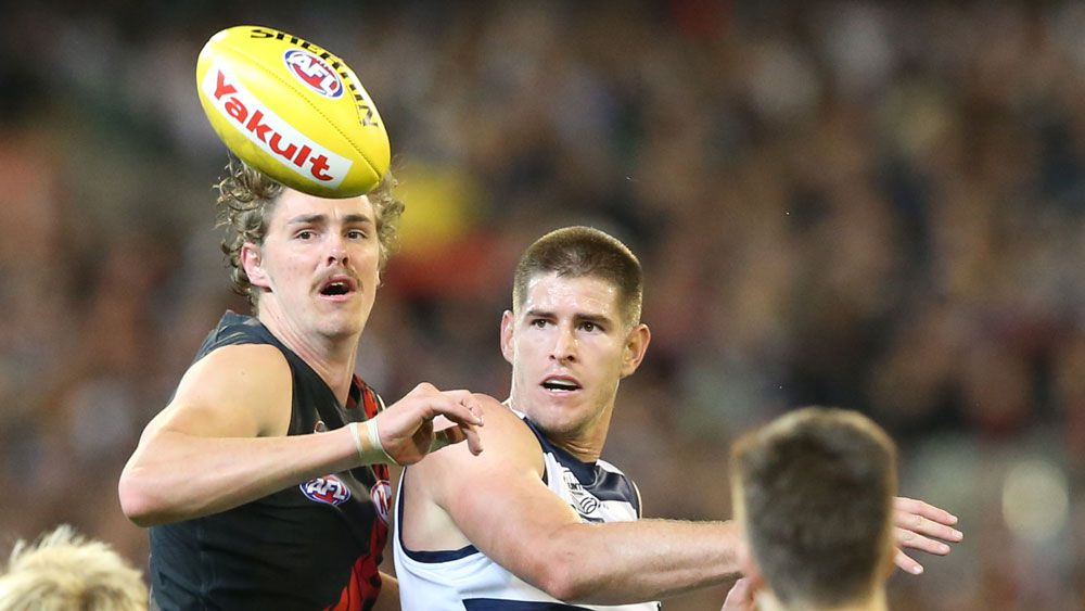 Essendon's Joe Daniher and Geelong's Lincoln McCarthy in action. (AAP)