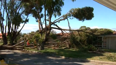 Perth mops up after freak thunderstorm rips off roofs