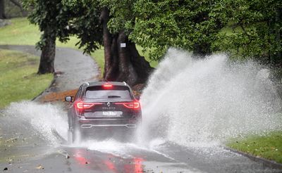 A car negotiates water across the road at Mrs Maquaries drive in the CBD.