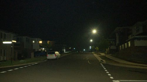 Police were called to a house party in Schofields last night.