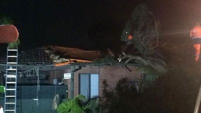 A home in Forrestfield is uninhabitable after a tree came down overnight. (9NEWS)