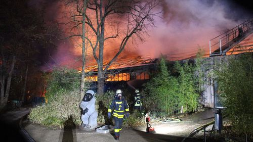 Firefighters stand in front of the burning monkey house at Krefeld Zoo, in Krefeld, Germnay, Wednesday Jan 1, 2020. A fire at a zoo in western Germany killed a large number of animals in the early hours of the new year, authorities said