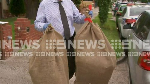 Cannabis plants were removed from the Preston home today. (9NEWS)