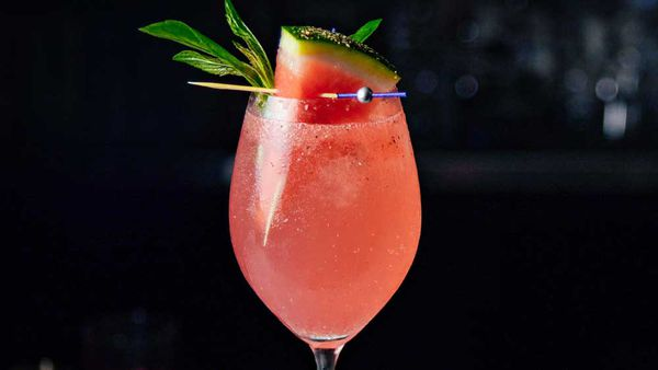 Watermelon and basil gin and tonic